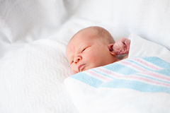 Infant Baby in Blanket Stock Photo