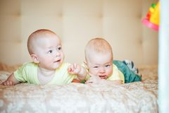 Infant Baby Child Twins Brothers Six Months Old at Home on the Bed Royalty Free Stock Photo