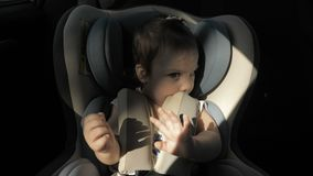 Infant baby girl in car seat.  stock video footage