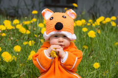 Infant baby girl fox hat Royalty Free Stock Photography