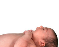 Infant Baby Girl Looking Up Stock Images