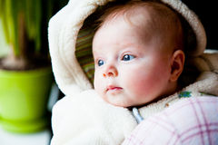 Infant baby girl looking through window Royalty Free Stock Photo
