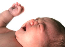 Infant Baby Girl Screaming Up Royalty Free Stock Image