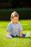 Baby playing on the grass Stock Image