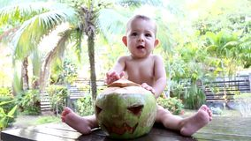 Infant baby sits on a wooden table against the background of palm trees and funny  yawns. In front of him is a green coconut with. His face carved on it like a stock video