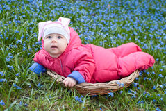 Infant baby in snowdrps flower Royalty Free Stock Photos