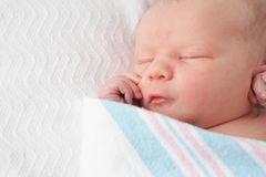 Infant Baby Swaddled in Hospital Blanket Stock Photos