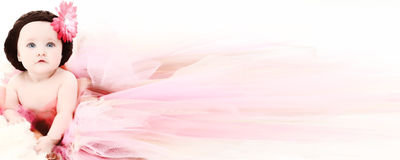 Infant Banner. Adorable 5 month old baby girl in pink and brown hat and tutu banner. Copy space Stock Photography