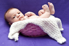 Infant in Basket Stock Photography