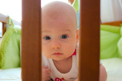 Infant behind bars of the crib. Adorable baby girl behind the bars of the crib Stock Photography