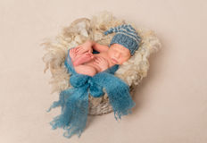 Infant in a blue hat Royalty Free Stock Images