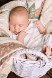 Infant boy in the basket. Stock Image