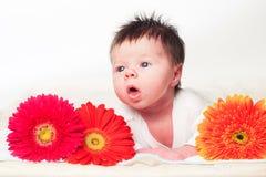 Infant boy Royalty Free Stock Photo