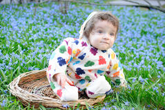 Infant boy sit basket snowdrops Royalty Free Stock Images