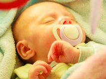 Closeup of little newborn sleeping with teat in mouth. Infant care, beauty of childhood concept. Little newborn baby sleeping calmly in bed with teat in mouth Stock Photography