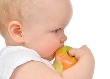 Infant child baby girl eating apple closeup Stock Images