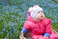 Infant child in the flower field Royalty Free Stock Photos