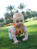 Infant crawling on a green grass. Baby girl crawling on a green grass royalty free stock photography