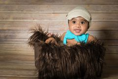 Infant dogla boy wearing hat and bow tie sitting in a fluffy furry basket wooden background modern studio shoot vintage look. Stock Photography
