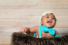 Infant dogla boy wearing hat and bow tie sitting in a fluffy furry basket wooden background modern studio shoot vintage look. Royalty Free Stock Photos