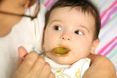 Infant eats the puree Royalty Free Stock Images