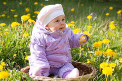 Infant in a flower field Royalty Free Stock Photo