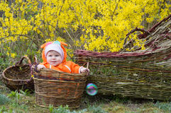 Infant girl in the basket Stock Photos