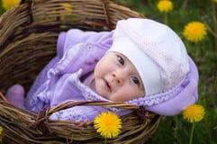 Infant girl in basket Stock Photo