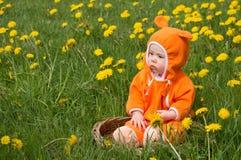 Infant girl in dandelions Stock Image