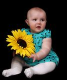 Infant girl with large golden sunflower. isola Royalty Free Stock Image