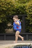 Infant girl running by the poo. A toddler girl is running by the pool in the bulky colorful swimsuit - concentration on her face.  Feet and hands are a little Royalty Free Stock Photography