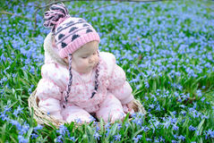 Infant girl sit snowdrops field Royalty Free Stock Images