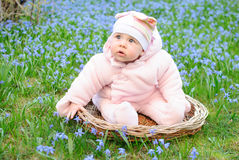 Infant girl sit snowdrops field Stock Images