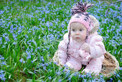 Infant girl sit snowdrops field Royalty Free Stock Photo