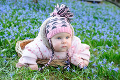 Infant girl snowdrops field Royalty Free Stock Images