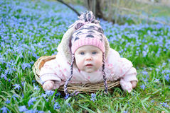Infant girl snowdrops field Royalty Free Stock Photo