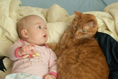 Infant girl watching a cat Royalty Free Stock Photography