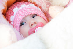 Infant girl on a winter walk Royalty Free Stock Photography