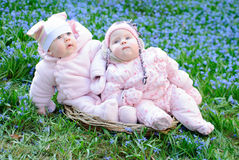 Infant girls sit basket snowdrops Royalty Free Stock Image
