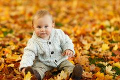 Infant in Gray 3 Button Up Long Sleeve Shirt Sitting on Brown leaves Royalty Free Stock Image