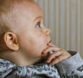 Infant. Royalty Free Stock Photography