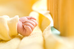 Infant hand in baby bed with wooden fence Royalty Free Stock Image