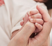 Infant hand and mother hand Stock Image