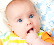 Infant with hand in mouth Royalty Free Stock Image