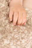 Infant hands royalty free stock photography