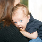 Infant on hands at mom Stock Photography