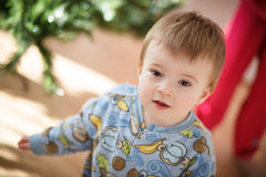Infant helping with the Christmas Tree Stock Photos