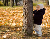 Infant leaning on autumn tree stock photography