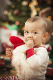 Infant Mixed Race Baby Enjoying Christmas Morning Near The Tree Stock Photography