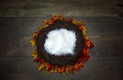 Infant Nest Fantasy Background Photo Prop with colorful fall lea. Ves and twigs Isolated on brown wooden background. Newborn photography digital background prop stock image